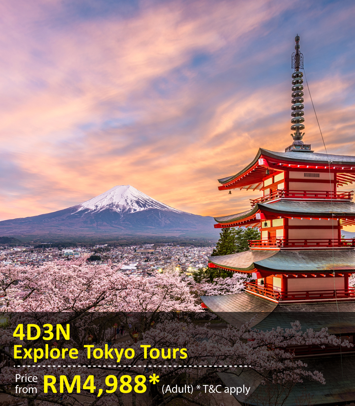 UOB Special Promo Package: 4 Days 3 Nights Tokyo Tours