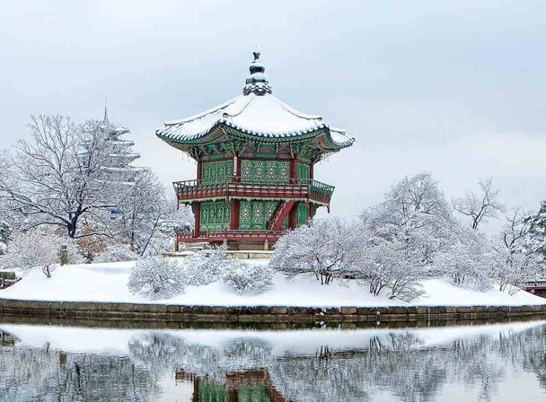 5 Days 4 Nights Korea Trip Muslim Winter